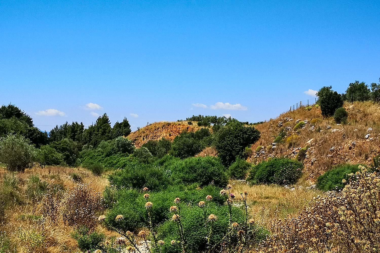 Diga di Tirinto