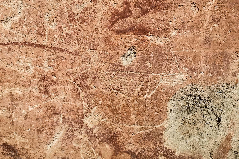 Graffito Uccellino