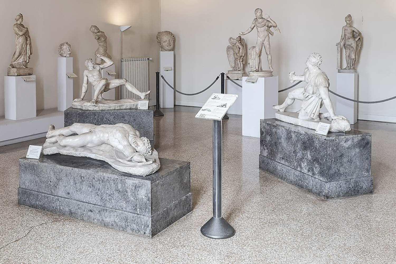 Galati del Museo Archeologico di Venezia